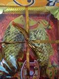 Представление свадьбы бенгальца стоковое изображение rf