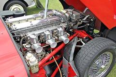 представление ягуара двигателя высокое Стоковое фото RF