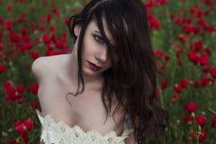 Представления девушки на поле мака Стоковые Изображения RF