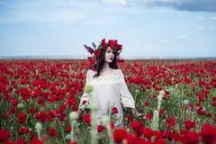 Представления девушки на поле мака Стоковая Фотография RF
