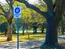 Предупредительный знак для пешеходов только в дорожке на общественном парке стоковая фотография rf
