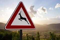 Предупредительный знак - животные Стоковые Фото
