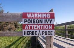 Предупредительный знак плюща отравы стоковые изображения rf