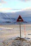 Предупредительный знак Svalbard полярного медведя Стоковые Фотографии RF