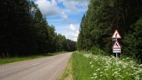 Предупреждение дорожного знака опасного правого скрещивания оленей кривой и знака Стоковые Изображения