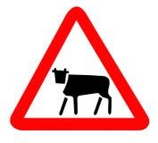 предупреждение знака коровы Стоковые Изображения