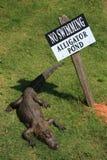предупреждение знака Стоковые Фото