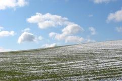 предыдущая весна стоковое фото