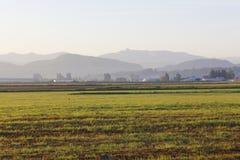предыдущая долина утра fraser стоковая фотография rf