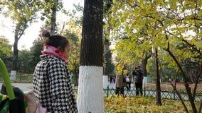 предыдущая зима в парке стоковые изображения rf