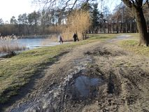 Предыдущая прогулка весны в парке вдоль берега озера Стоковое Фото