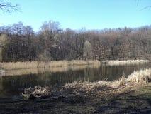 Предыдущая прогулка весны в парке вдоль берега озера Стоковое фото RF