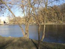 Предыдущая прогулка весны в парке вдоль берега озера Стоковое Изображение RF