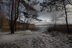 предыдущее лето берега утра озера Стоковые Фотографии RF