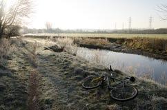 предыдущее утро заморозка Стоковое Фото
