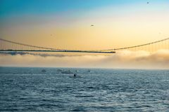Предыдущий туманный день в Стамбуле стоковые фото