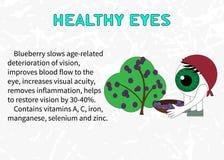Преимущества голубик для здоровых глаз Стоковое Изображение RF