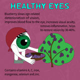 Преимущества голубик для здоровых глаз Стоковые Изображения RF