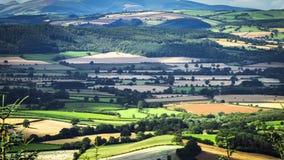 Преимущественный взгляд над великобританской сельской местностью на лете акции видеоматериалы
