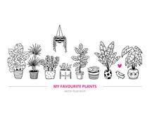 Прекрасные комнатные растения с птицей в freehand стиле иллюстрация штока