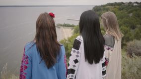 3 прекрасных девушки нося длинное платье моды лета идя на поле на фоне озера или акции видеоматериалы