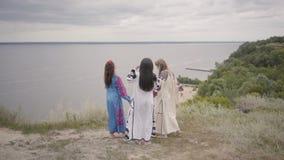 3 прекрасных девушки нося длинное платье моды лета на поле на фоне озера или реки 2 акции видеоматериалы