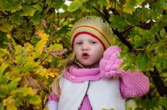 Прелестная девушка в лесе осени стоковые фото