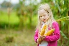 Прелестная девушка играя в кукурузном поле на красивый день осени Милый ребенок держа удар мозоли Сбор с детьми Стоковые Фото