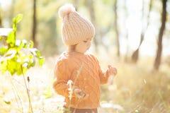 Прелестная маленькая девочка открывая природу на лесе осени, солнечный день Стоковое Изображение