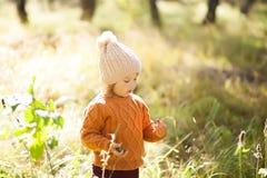Прелестная маленькая девочка открывая природу на лесе осени, солнечный день Стоковые Изображения RF