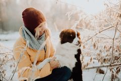 Прелестная пушистая милая черно-белая граница colly быть натренированный и petting девушка в парке света и кусты на стоковые фото