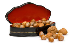 Прелестно ларец грецких орехов Стоковая Фотография RF
