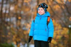Прелестный мальчик играя в парке осени стоковое изображение rf