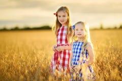 2 прелестных маленьких сестры идя счастливо в пшеничное поле на теплом и солнечном вечере лета Стоковые Фотографии RF