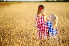 2 прелестных маленьких сестры идя счастливо в пшеничное поле на теплом и солнечном вечере лета Стоковое Изображение