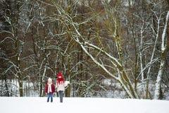 2 прелестных маленькой девочки имея потеху совместно в красивом парке зимы Красивые сестры играя в снеге Стоковые Изображения