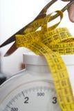 препятствуйте свободному весу s Стоковые Фотографии RF