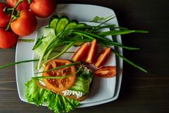 Прервал свежие овощи украшенные с пряными зелеными цветами стоковое изображение