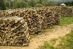 прерванная древесина камина Стоковая Фотография