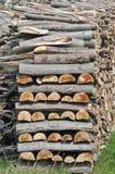 прерванная древесина Стоковая Фотография