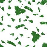 Прерванная картина петрушки безшовная Стоковые Фото