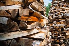 Прерванная древесина на зима Стоковое фото RF