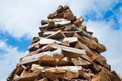 Прерванная древесина на зима Стоковые Фотографии RF