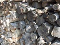 прерванная древесина пожара Стоковое Изображение
