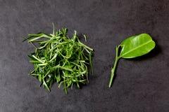 Прерванные листья бергамота и листья бергамота Стоковые Фотографии RF