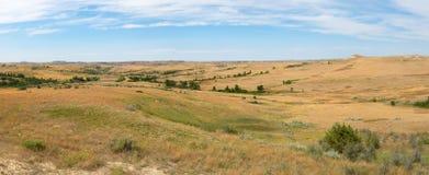 Прерия, трава, знамя, панорама, панорамная стоковое изображение rf