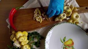 Прерывать золотые грибы устрицы видеоматериал