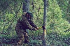 прерывать древесину человека Стоковое Фото