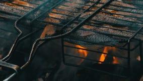 Пресноводный карась crucian карпа рыб реки зажарил конец горящих и дыма гриля вверх по взгляду Очень вкусные зажаренные рыбы на сток-видео