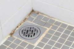 прессформа ванной комнаты Стоковое фото RF